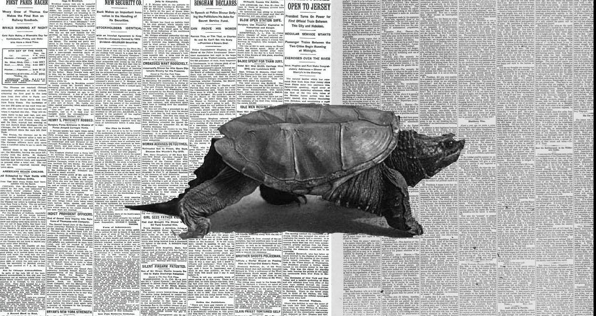 Η βουλιμία για ειδήσεις και τα slow media