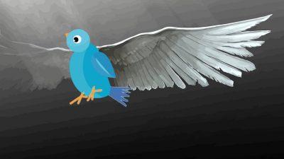 """Ενταση, πόλωση και νέοι """"λογαριασμοί"""" στο twitter τις μέρες των πυρκαγιών"""