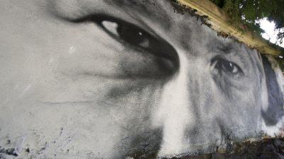 Τζούλιαν Ασάνζ, ο «εξωτικός» μονομάχος
