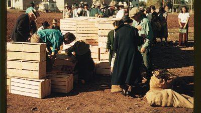 Πείνα: οι αριθμοί της ντροπής