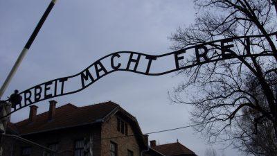 Ολοκαύτωμα: στα μονοπάτια της θηριωδίας του Auschwitz